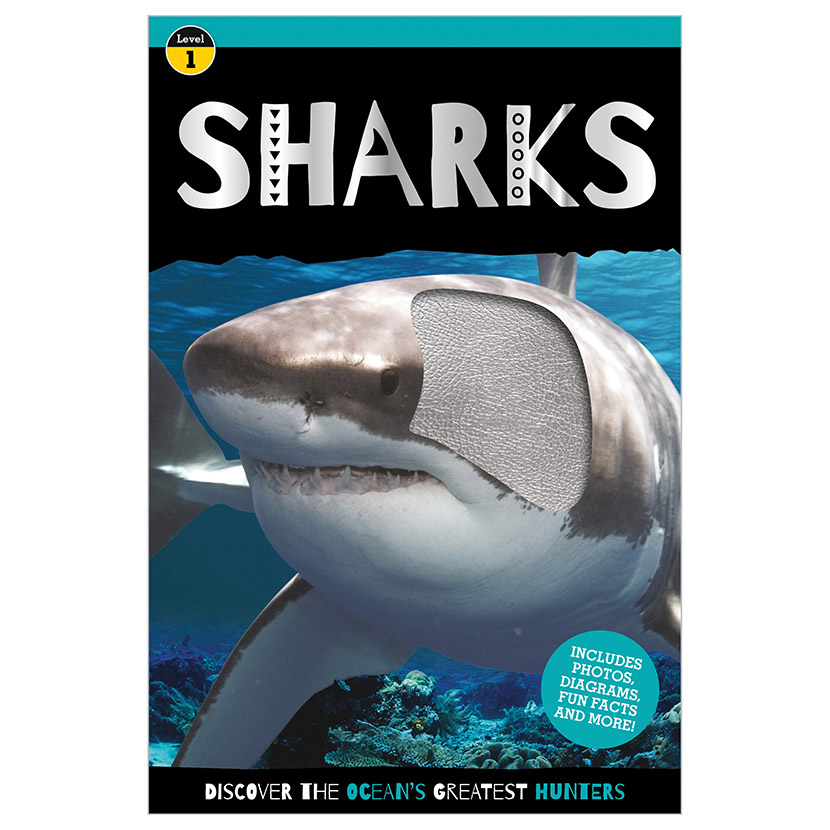 First Spread of Sharks (9781800580176)